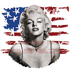 Marilyn Monroe with Flag Size Youth Medium to 6 X Large T Shirt Pick Your Size image