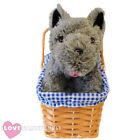 DOROTHY TOTO WICKER BASKET AND DOG FANCY DRESS PROP ACCESSORY WORLD BOOK DAY