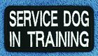 """Service Dog IN TRAINING Patch 2X4"""" Medical Assistance Disabled Vest Danny LuAnn"""