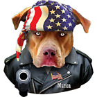 Murica Pit Bull T Shirt Pick Your Size 7 X Large to 14X Large