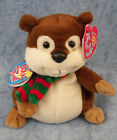 W-F-L Ty Beanie Babies Forest and Wiesentiere Bear Bieber Raccoon Squirrel
