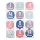 1-12 Months Baby Monthly Milestone Stickers Baby Shower Photo Props