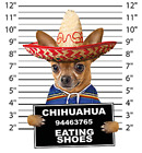 Chihuahua Mug Shot Size Youth Small to 6 X Large T Shirt Pick Your Size image