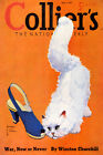1939 WHITE CAT BLUE SHOES COLLIER'S MAGAZINE COVER FINE VINTAGE POSTER REPRO
