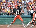 CLEVELAND BROWNS - BRIAN SIPE Photo Picture Football 1980s Vintage 8x10 or 11x14 $4.95 USD on eBay