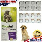 Bayer Drontal Plus Roundworm and Tapewormer For Dogs 4 Tablets Box SALE PRICE