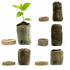 Jiffy Peat and Coir Propagation Pellets Seed Germination Plugs