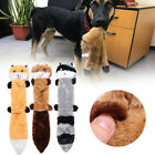 Plush Bite Resistant Vocalization Dog Chew Toys Raccoon Toy Molars Toothbrush