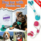 Multifunction Pet Molar Toy Cleaning Teeth Safe Elastic Toy Belt For Dog Puppy M