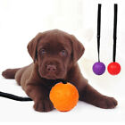 AM_ RUBBER BALL STRAP ROPE DOG CLEANING TEETH PET CHEWING BITE TRAINING TOY STRI