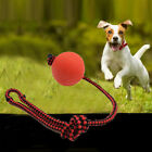 EXERCISE Pet Puppy Chew Toys Dog Chew Toy Solid Rubber Ball Pet Puppy Toys