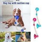 Pet Molar Bite Toy Pets Dogs Rope Ball Chew Toys Pet Tooth Cleaning Suction Cup