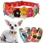 Pet Dog Flower Collar Leather Studded Dogs Necklaces Collars For Chihuahua