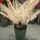 Natural Dried Flower Fern Leaf Bunch Plant Wedding Party Home Floral Decoration