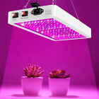 8000W LED Grow Lights Full Spectrum Lamp for Indoor Outdoor Plant Hydroponic