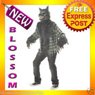 C232 Full Moon Madness Werewolf Mens Adult Halloween Scary Costume