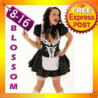 8181 Fancy Dress French Maid Ladies Costume + Duster