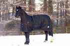 Turnoutmasta High Neck Mediumweight 250g Turnout Rug