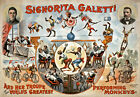 TH65 Vintage Circus Monkeys Theatre Poster A1 A2 A3