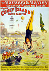 TZ62 Vintage Barnum Coney Island Water Circus Carnival Poster Re-Print A4