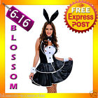 J65 Ladies Play Boy Bunny Rabbit Fancy Dress Hens Night Party Halloween Costume