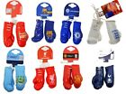 OFFICIAL FOOTBALL CLUB - TEAM MINI BOXING GLOVES CAR HANGING ACCESSORY GIFT XMAS