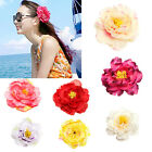 "6/10pcs 4"" Big Peony Flower Women Bride Hair Clip Hat Beach Party Wedding Decor"
