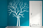 Large Split Tree Forest Birds Wall Wall Stickers Vinyl Decor Decal Mural Art AU