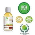 Oregano Origanum vulgare Oil Infusion 50 - 100ml FREE UK Post