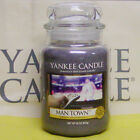 (m-p Scents) Yankee Candle Large 22 Oz Jar Candles Varitey New & Retired Choices