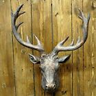 Minster Stag Head Metallic 22.5'' Wall Mounted Antler Wall Decor in 2 COLOURS