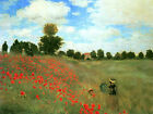 Wild Red Poppies at Argenteuil Claude Monet Canvas Fine Art Print Painting Repro