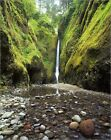 Poster / Leinwandbild Lower Oneonta Falls and Creek in Oneonta Go... - J. Wild