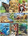 15 DESIGNS OF A5 ARTIST PAINTING BY NUMBER CRAFT KITS WITH GUIDE, PAINTS & BRUSH