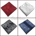 "10Pcs 10"" Fashion Paisley Pocket Square Handkerchief Wedding Party Good Quality"