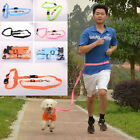 Brand New Running-Jogging Fitness Dog Harness, Leash & Hands Free Belt