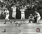 Carlton Fisk Boston Red Sox 1975 World Series Action Photo (Select Size)