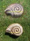 NEW RUBBER LATEX MOULD MOLD MOULDS AMMONITE FOSSIL 2D SMALL OR LARGE 2 DESIGNS