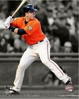 Buster Posey San Francisco Giants 2011 MLB Spotlight Action Photo (Select Size)