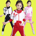 Kids Girls Sport Suit Long Sleeve Zipper Hoodie Casual 2 Pieces Red Blue Pink