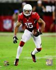 Michael Floyd Arizona Cardinals 2014 NFL Action Photo (Select Size)