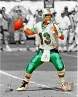 Dan Marino Miami Dolphins NFL Spotlight Action Photo (Select Size)