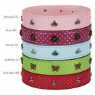 """6-8"""" - CHARMERS  - EAST SIDE COLLECTION - DOG COLLAR w. CHARMS - BLUE"""