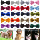 Dog Bow Tie Neck Acccessory Necklace Collar Puppy Bright Colour Pet Dickie Bow