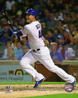 Anthony Rizzo Chicago Cubs 2015 MLB Action Photo SE065 (Select Size)
