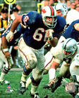 Billy Shaw Buffalo Bills NFL Action Photo PX108 (Select Size)