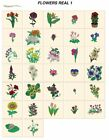 real FLOWERS 1. CARD machine embroidery designs jef files 4 janome 300e
