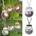 Silver/Gold/Bronze Glass Starfish Pearl Wishing Necklace Pendant Sweater Chain
