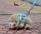 NEW Adjustable hedgehog Harness for Training Playing traction rope Free Shipping