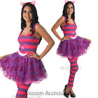 CL917 Deluxe Cheshire Cat Kitten Alice in Wonderland Fancy Dress Ladies Costume